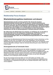 Veröffentlichungen Relationship Fokus Analyzer