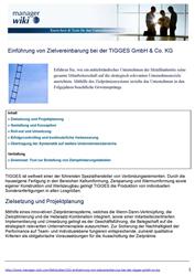 Veröffentlichungen Einführung von Zielvereinbarung bei der TIGGES GmbH & Co. KG