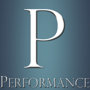 Performanceberatung: Unternehmensperformance, Performance Management